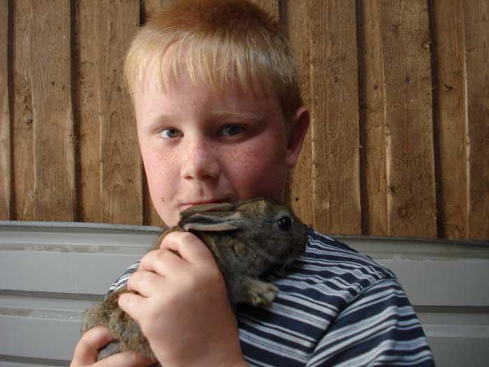 Danmarks børn er en frivillig organisation, som arbejder på at skabe