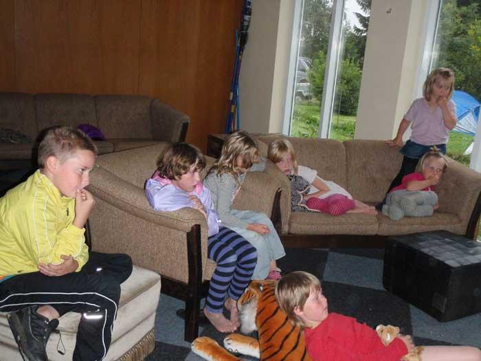 Danmarks børn er en frivillig organisation som arbejder på at skabe